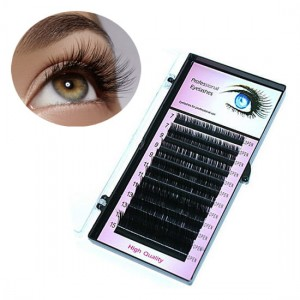 RZĘSY Professional Eyelashes 0.10 C, dł. 6mm